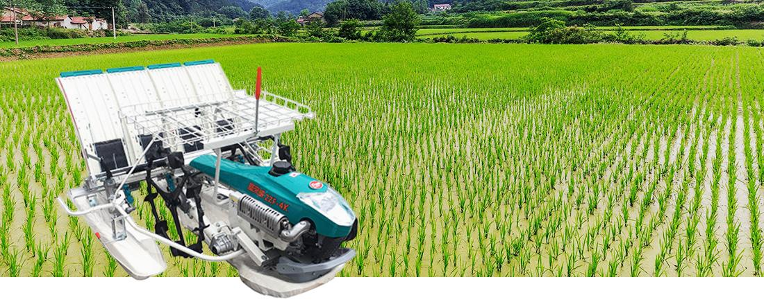 Nantong FLW Argricultural Equipment Co., Ltd.